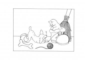 Zvířátka si hrají